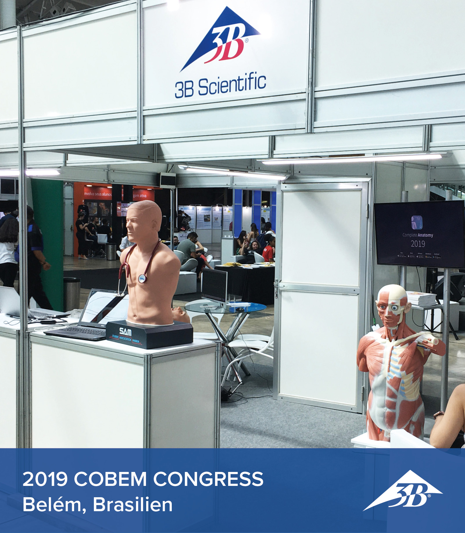 2019_COBEM_Congress_Belem_Press_Section_Banner_768x880.jpg