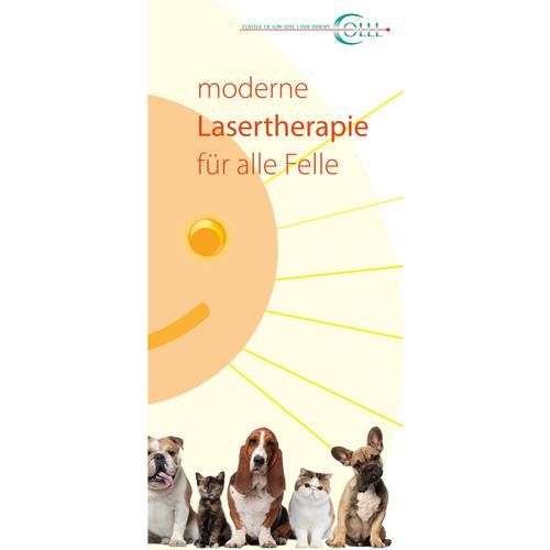 Flyer Laser Therapy and Laser Acupuncture Vet Small animals, DE, 1018602, Modelli